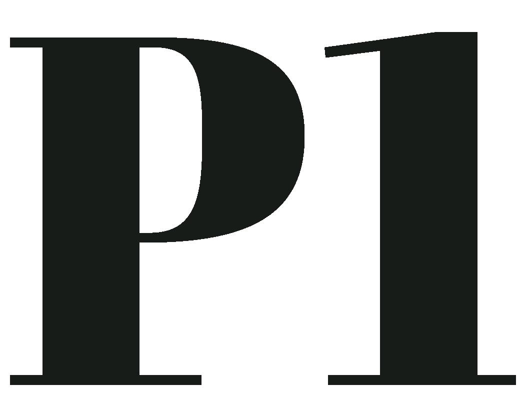 P1 SEO Agency